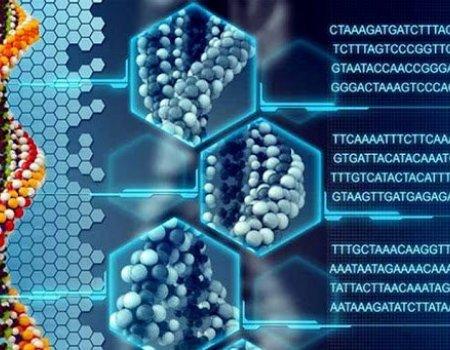 Созданы вещества, способные запустить регенерацию тканей