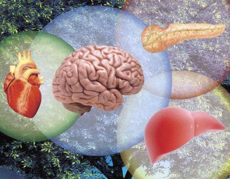 Регенеративная медицина