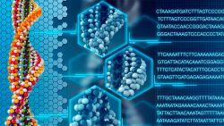 Найден способ использовать иммунную систему для регенерации тканей