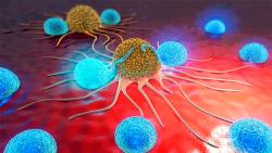 Рак может быть излечим, утверждают ученые