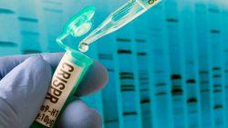 Ученые научились сохранять информацию напрямую в ДНК